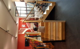 Showroom bois métal (1)